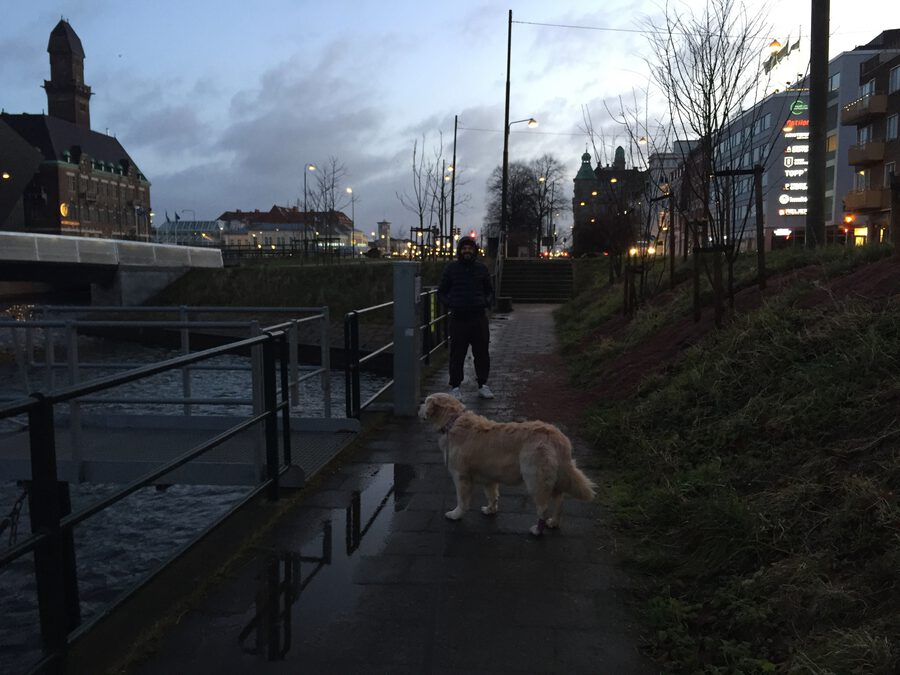 Morgenspaziergang in Malmö